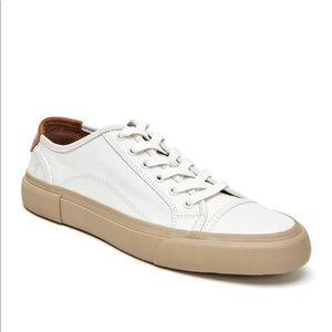 FRYE ludlow men's leather sneakers